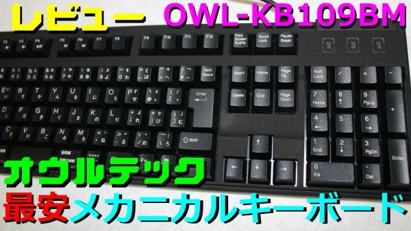 owltech-aojiku-600